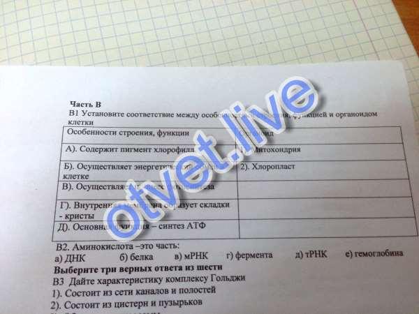 1) Митохондрия : б), г), д) 2) Хлоропласт : а), в)