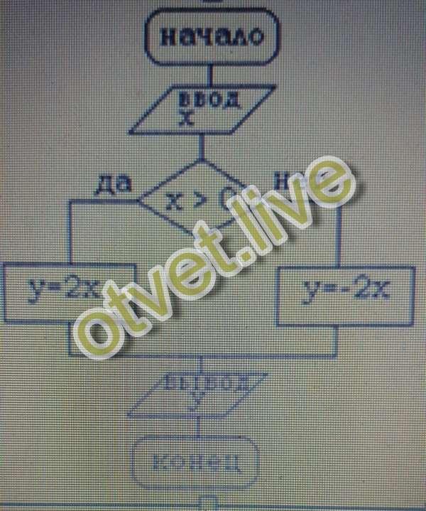Program blok; var x,y:real; begin readln(x) ;if xgt;0 then y:=2*x else y:=-2*x; writeln(y);