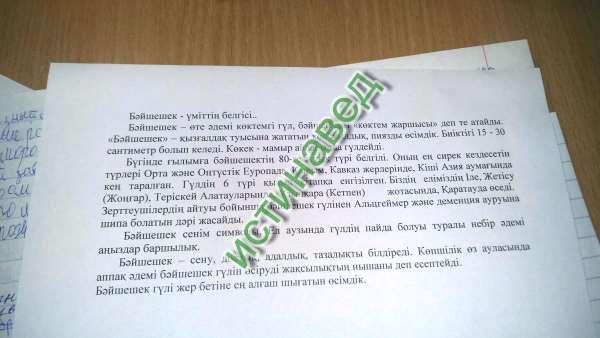 Эссе на казахском про семью 8967